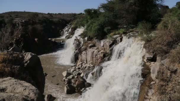awash national park and falls in wild nature, ethiopia, africa