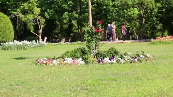 scénické záběry zelené zahrady v Íránu