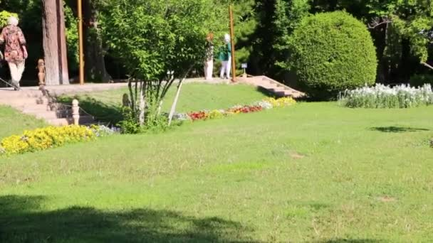 szenische Aufnahmen des grünen Gartens in iran
