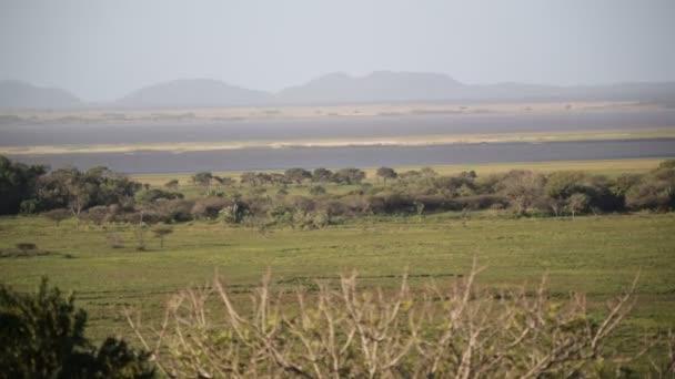 krásné jezero v přírodní rezervaci v Jižní Africe