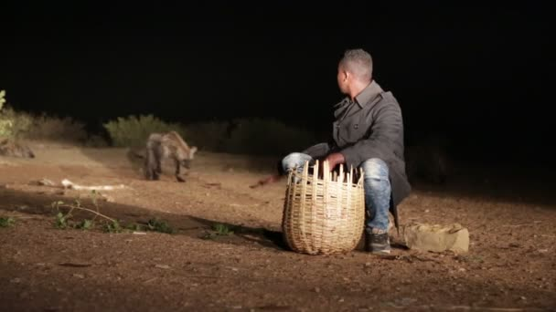 unidentified tourist feeding the hyena in night desert