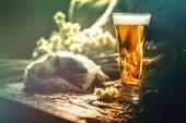 Sklenice čerstvého studeného piva v rustikálním prostředí. Potraviny a nápoje pozadí s copyspace