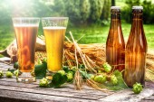 Brýle s čerstvým vychlazené pivo v rustikálním prostředí. Jídlo a pití pozadí