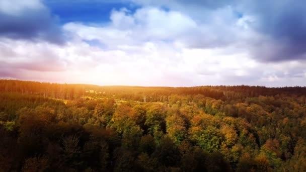 Légifotó az őszi erdőből, 4k. A természet háttere
