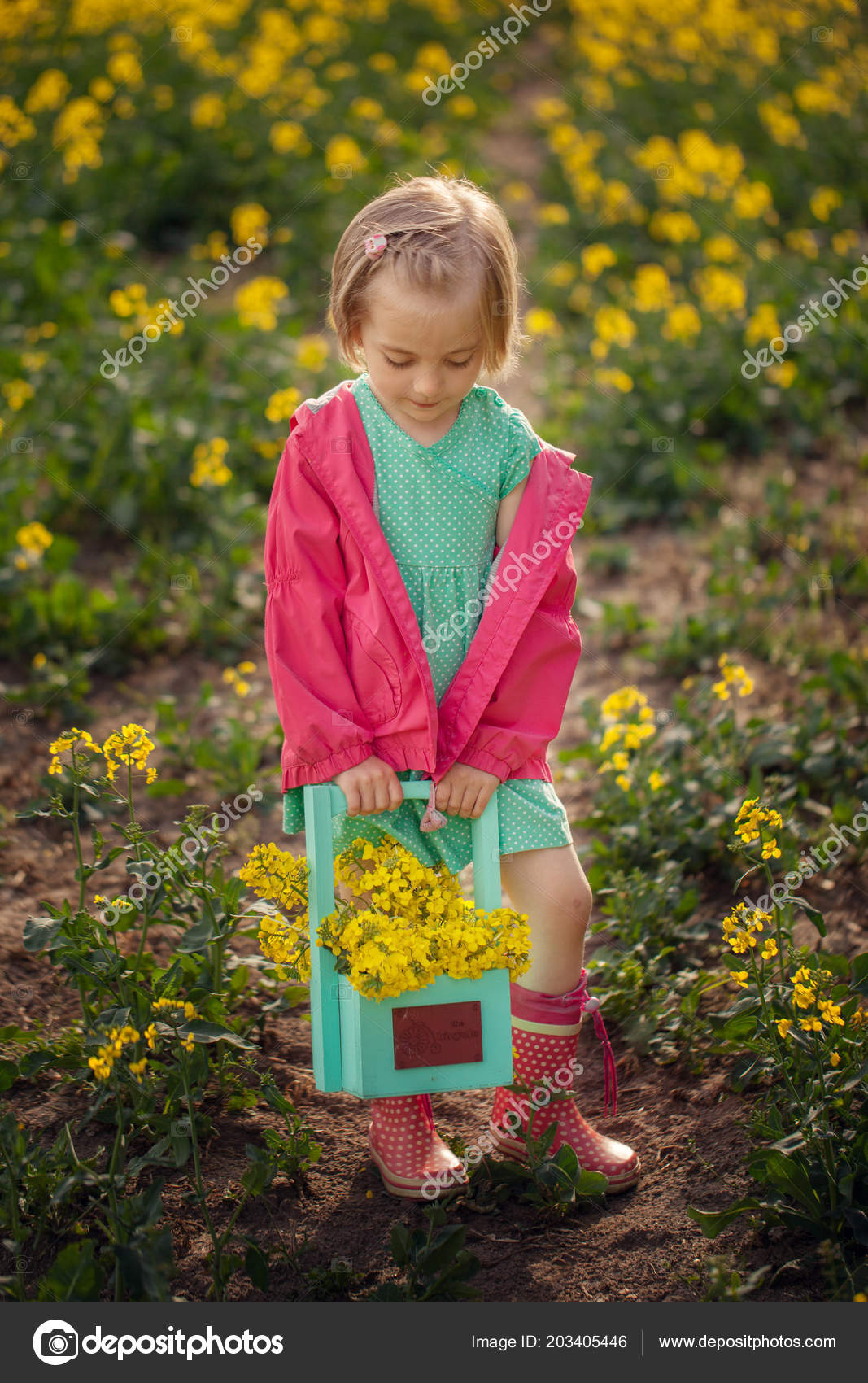 Little Girl Standing Spring Yellow Meadow Child Picking Summer