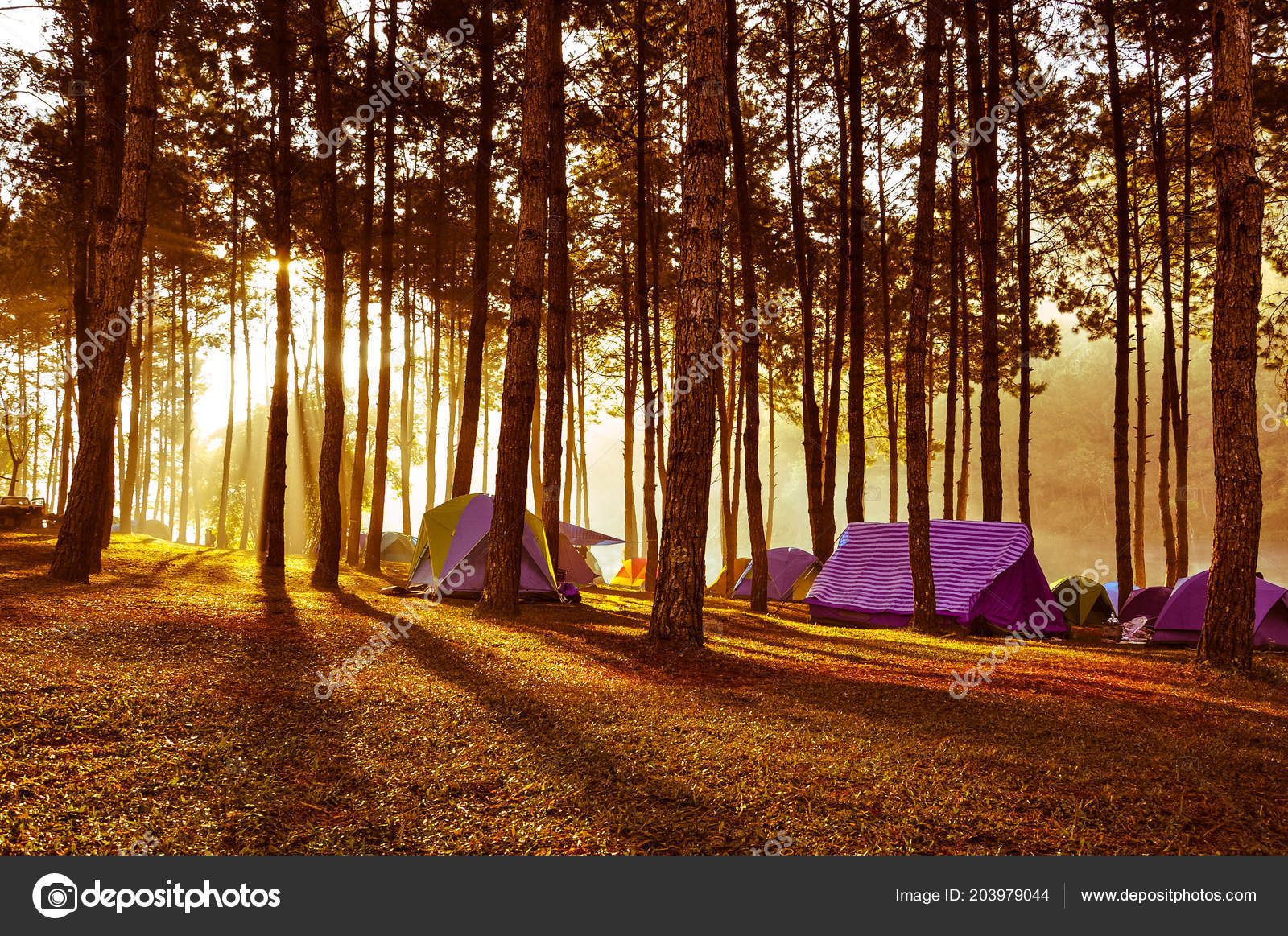Camping Background Wallpaper