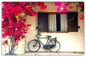 blühender lila Baum und altes Fahrrad im Retro-Stil