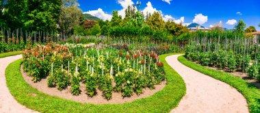 Villa Taranto with beautiful gardens.Famous places of Lago Maggiore,North Italy. stock vector