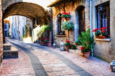 Charming old medieval villages of Italy with typical floral narrow streets. Assisi , Umbria stock vector