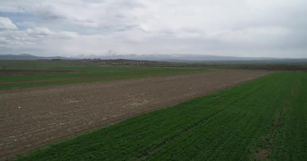 Green fields, snow mountains. Caucasus 4.19 172454 3 3.