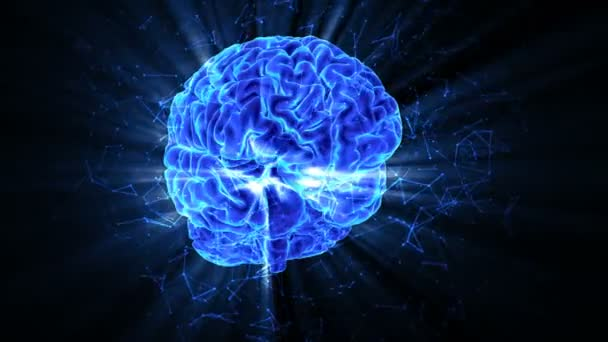 The rotating shining human brain around its axis. 3 D rendering looped animated blue background with a rotating Brain. Plexus structure evolving around.