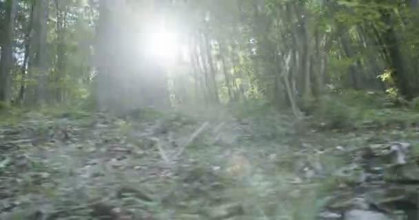 Sjezd na horském kole závod