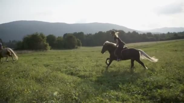Woman horseback riding gallop on green meadow.
