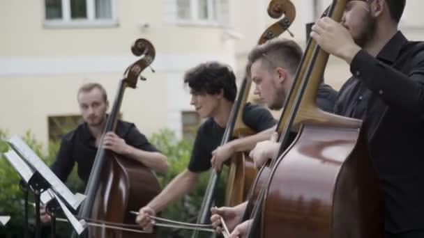Zenész játszik contrabass - nagybőgő