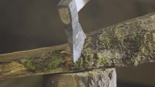 Cutting wood with and axeClose up of cutting branch on a log