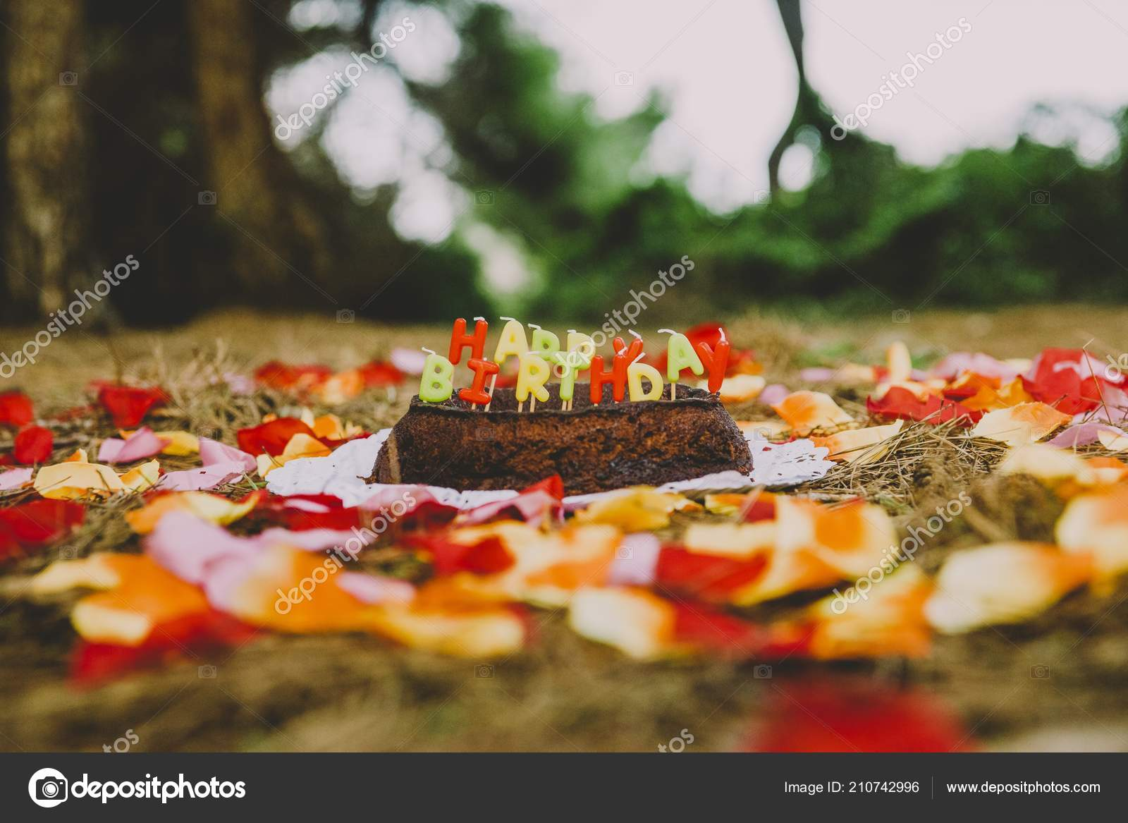 Pleasing Happy Birthday Cake Letters Candles Forest Stock Photo Birthday Cards Printable Riciscafe Filternl