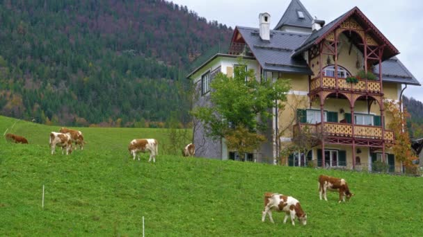 St.Wolfgang, Austria - October 24, 2017: Traditional Chalet house and Alps mountains in Salzkammergut area