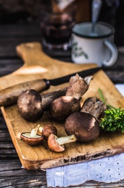 Porcini and Slippery Jack Mushrooms