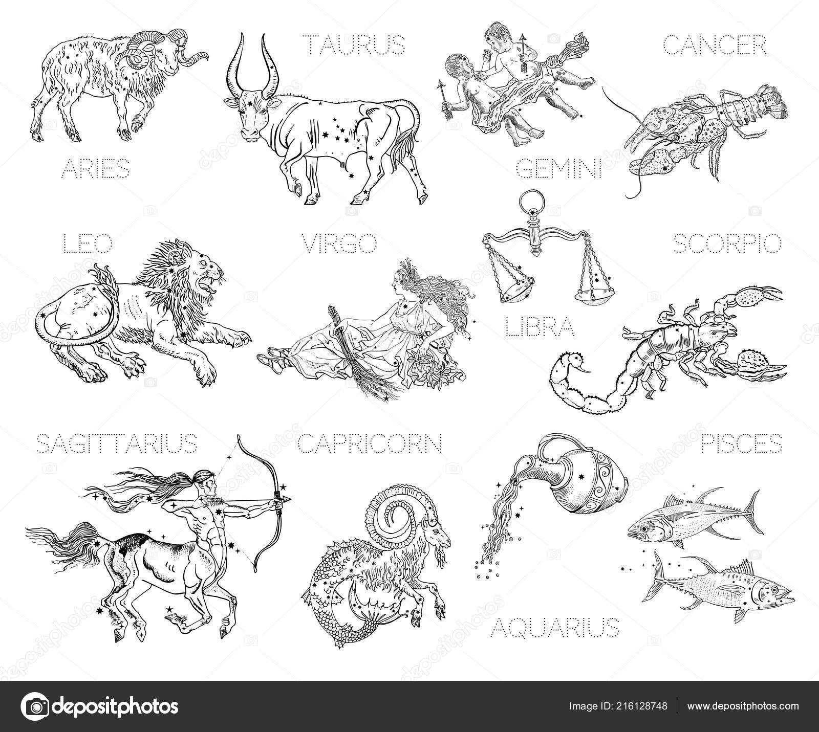 fbedd89be Vintage engraving tattoo style drawings isolated on white.– stock  illustration. Constellations, zodiac signs ...
