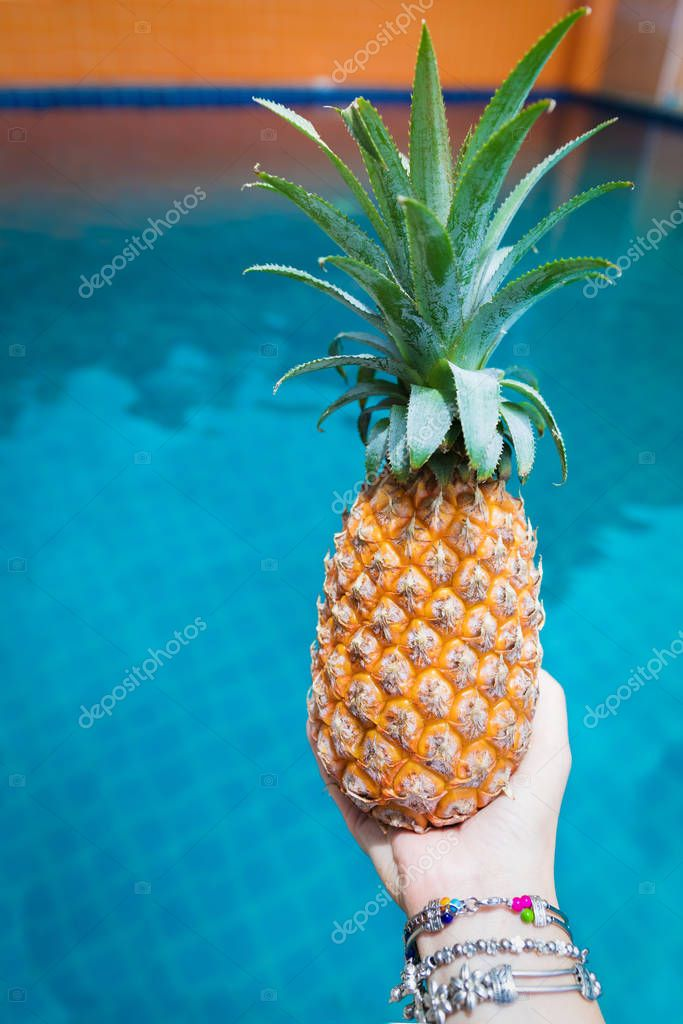 Fresh yellow pineapple tropic fruit summer in woman hands carryi
