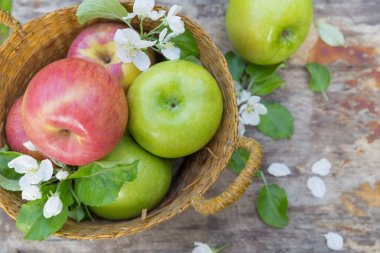 Fresh sweet juicy red and green apples with flowers on a wooden background