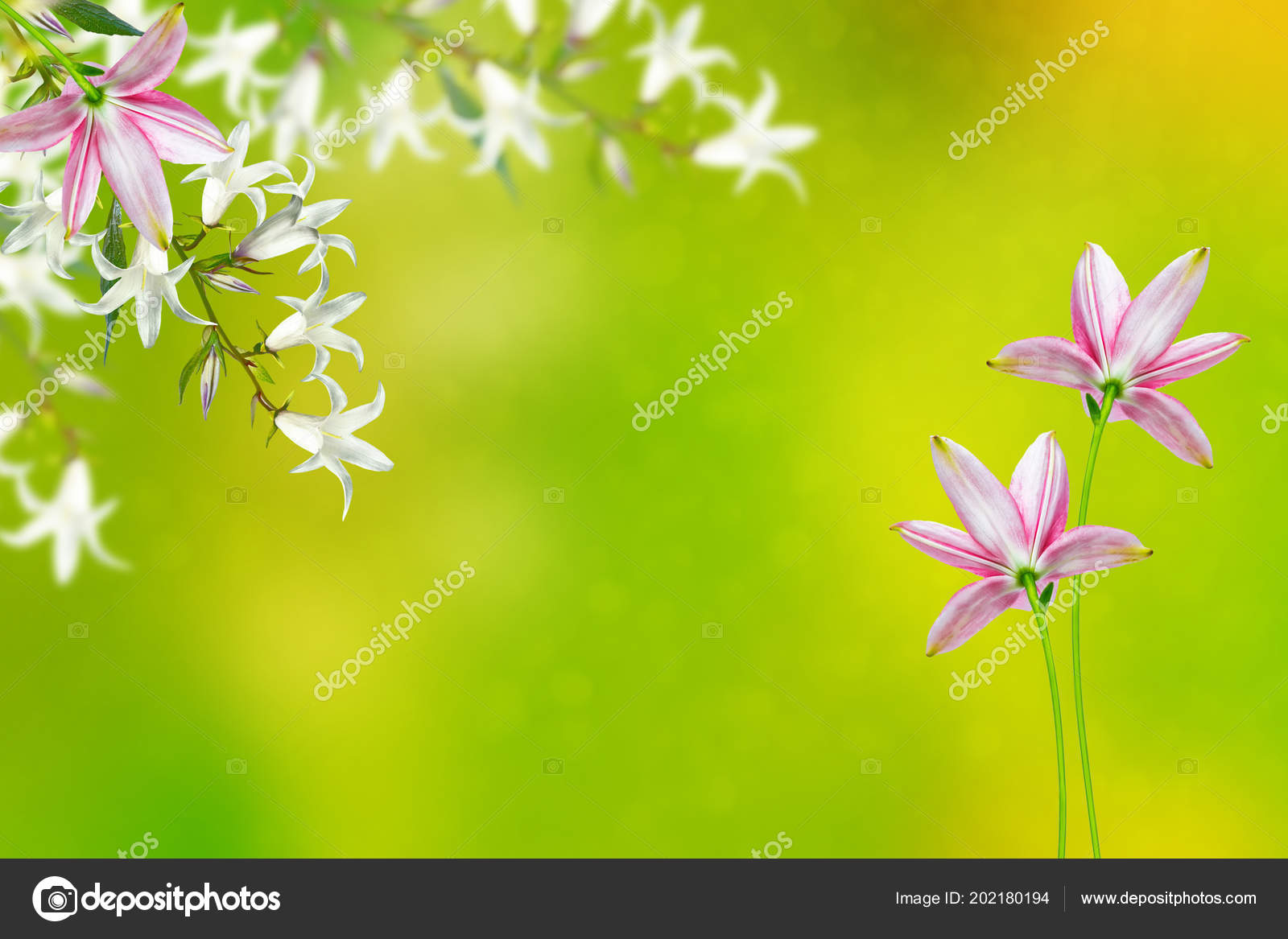 Floral Background Bright Spring Flowers Bells Stock Photo
