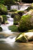 Ruscello di montagna con mossa della cascata nel bello paesaggio