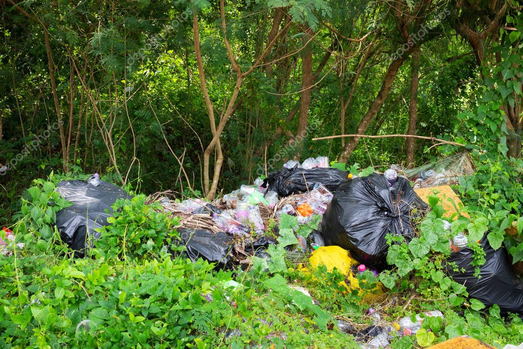 discarded plastic in forest is natural disaster