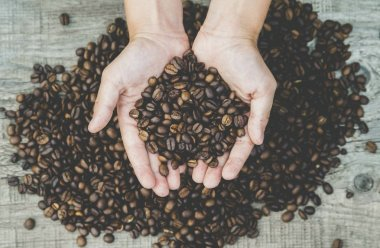 Close-up view of roasted coffee beans in man's hands.