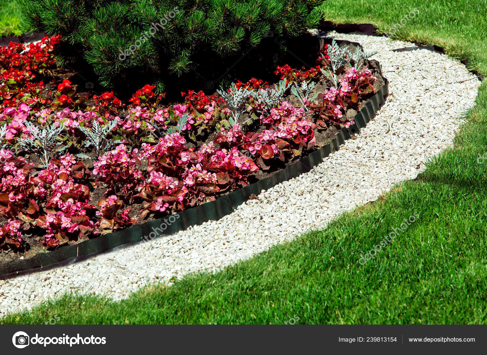 Landscape Design Plants Strewn Pebbles Flowerbed Green Lawn Close