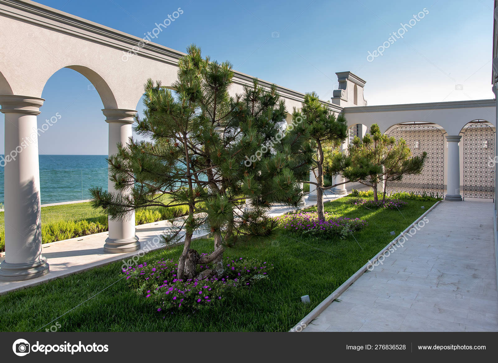 Terrace Flower Bed Green Lawn Pine Trees Surrounded Architectural