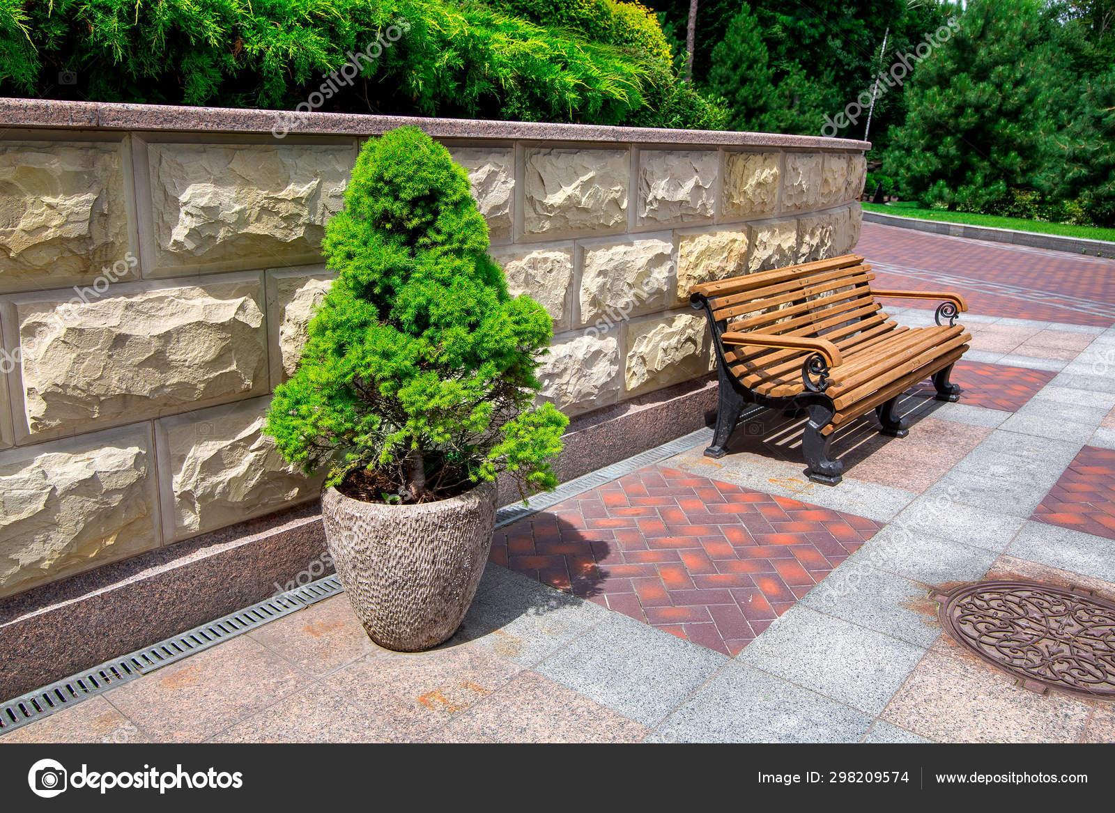Awe Inspiring Stone Flowerpot Evergreen Tree Wooden Bench Stone Wall Pdpeps Interior Chair Design Pdpepsorg