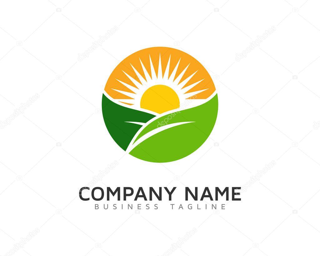 Sun Professional Logo Icon Design