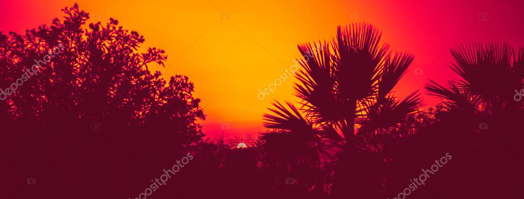 Summer landscape with a view of sea at sunset. Concept toning in duotone effect. Abstract background.