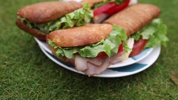 Ízletes szendvicsek a fűben.