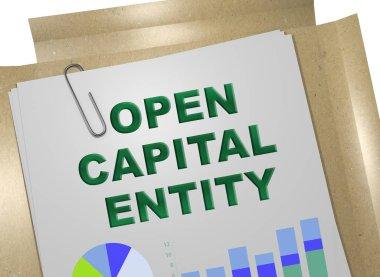 OPEN CAPITAL ENTITY concept