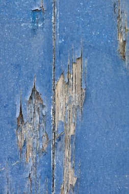 Cracked wood texture with peeled paint.