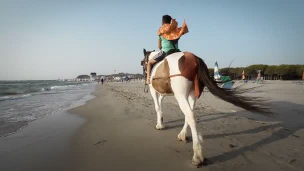 Pohledný mladík, jízda na koni na tropické pláži
