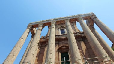 Roman forum in Rome with tilt shot of columns at San Lorenzo Miranda in spring sunny day with blue sky