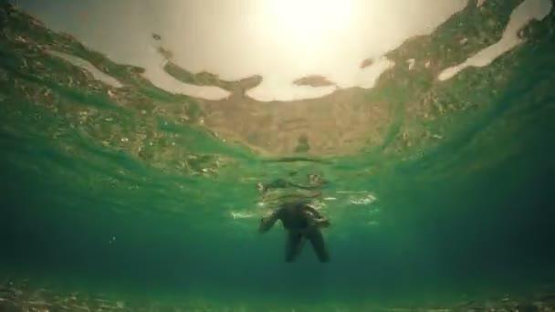 Underwaater pohled na sexy fit žena swimmin podsvícený východem slunce