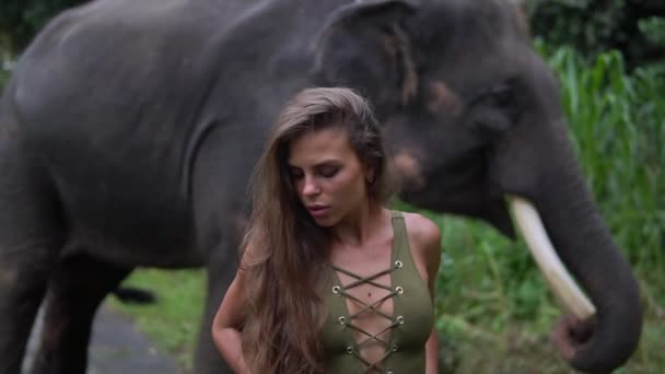 Close up and portrait type video of hazel-eyed wonderful adult girl with elephant somewhere in jungle