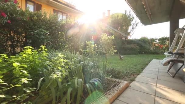 pohybující se pohled na dům se zahradou