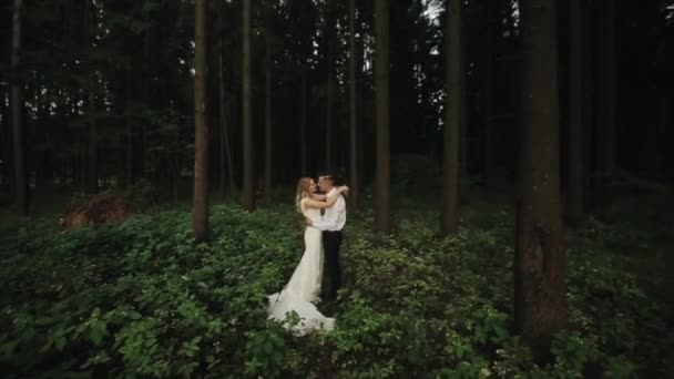 Beautiful and happy newlyweds stand in the forest embracing and kissing each other