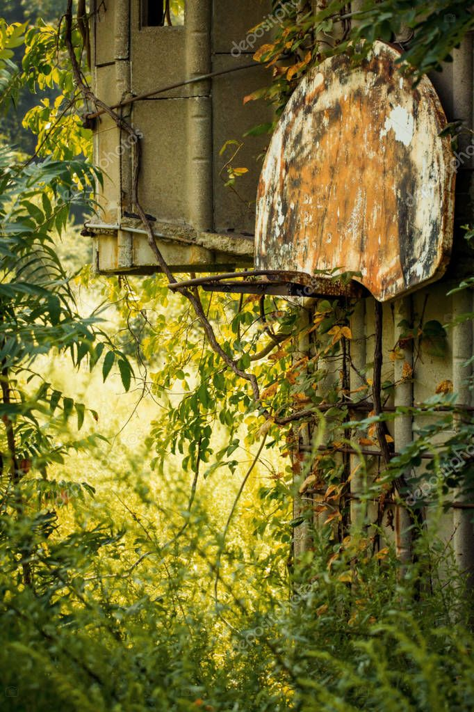 Grungy abandoned basketball hoop with overgrown weeds on farm silo