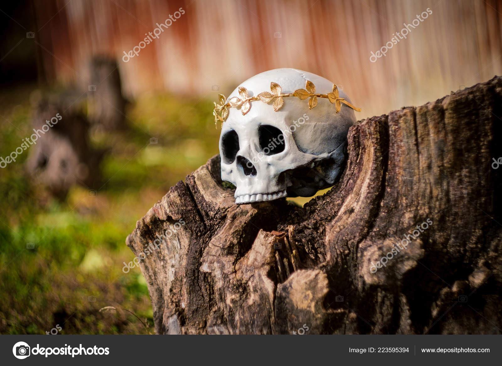 9e25299cf89 Lidská lebka krále nebo královnu korunou královský zlatý list– stock obrázky