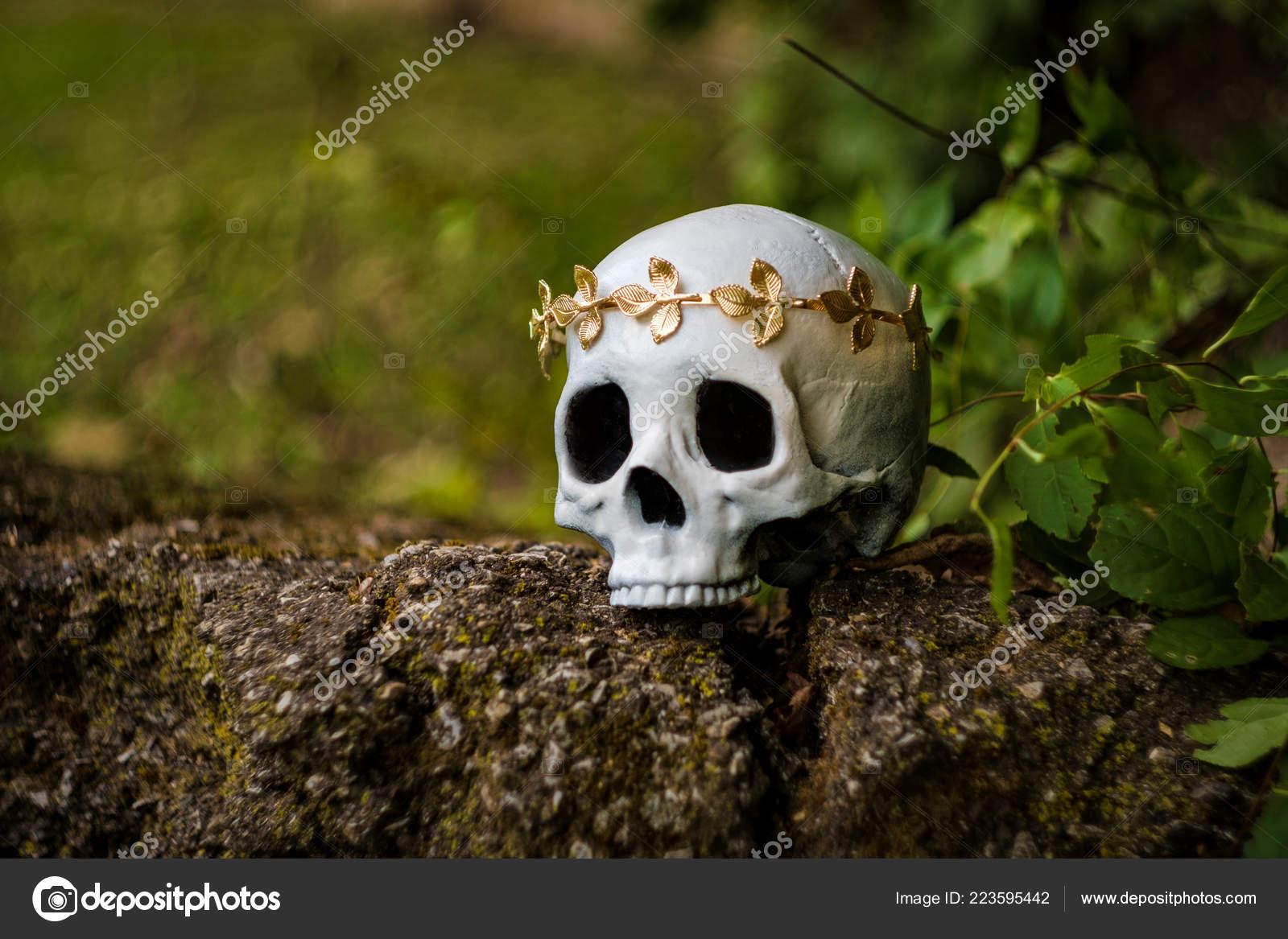 bd85665a9b4 Lidská lebka krále nebo královnu korunou královský zlatý list — Fotografie  od ...