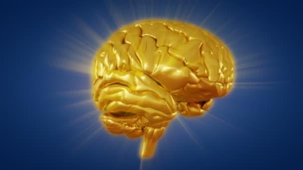 Zlatý lidský mozek rotace