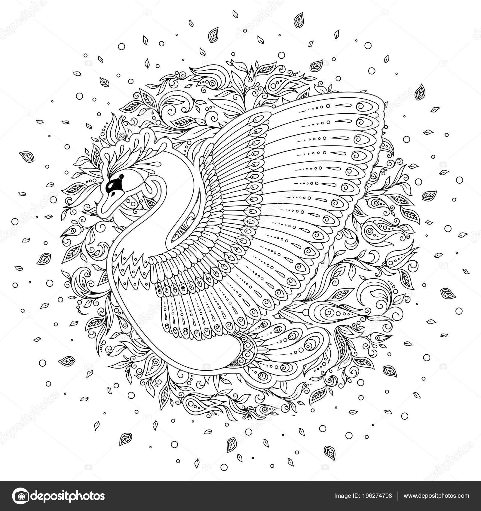 Elle çizilmiş Tavus Kuşu Beyaz Izole Antistress Boyama Sayfası