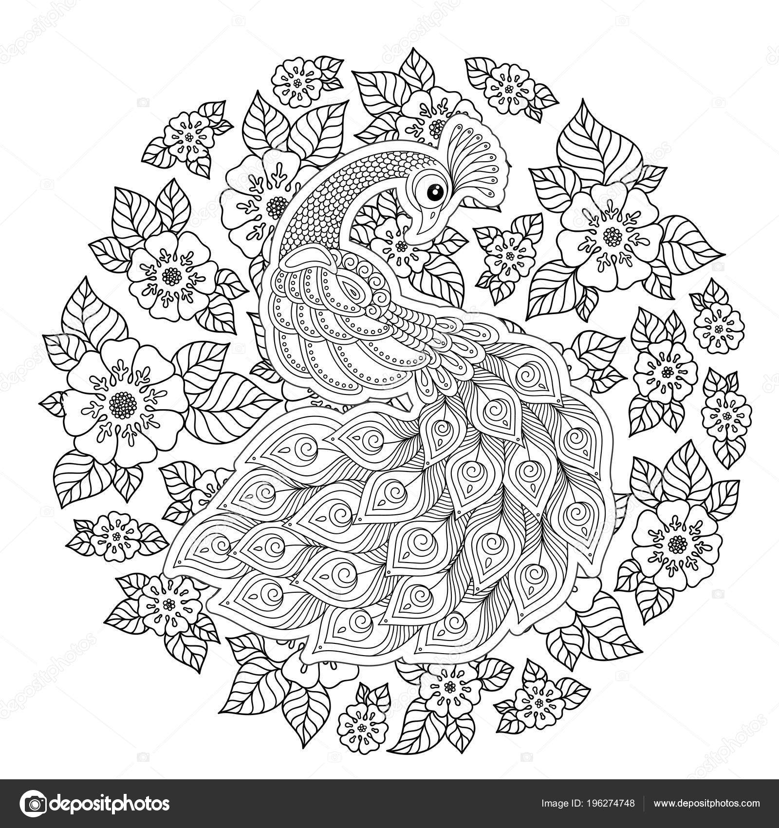 depositphotos stock illustration peacock adult antistress coloring page