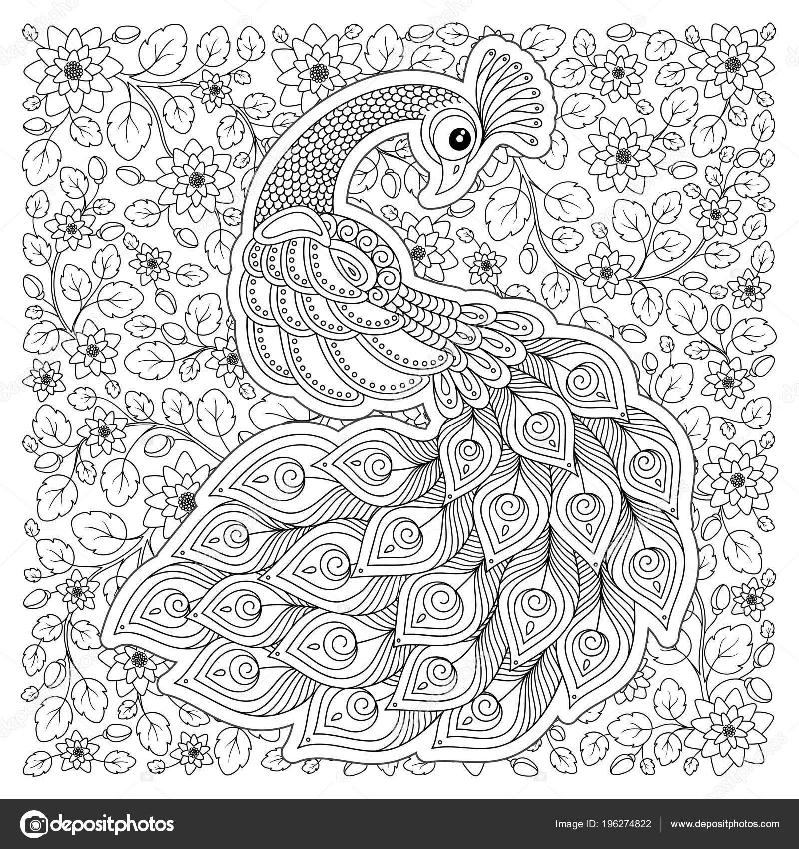 Tavus Kuşu Yetişkin Antistress Boyama Sayfası Siyah Beyaz Boyama